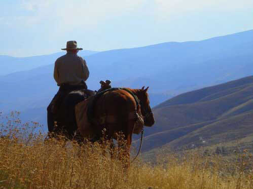 Experience the Salmon River while on guided horse back trail rides