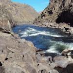 Aggipah's Idaho rafting trips see Bodacious Bounce Rapid on the Lower Salmon.