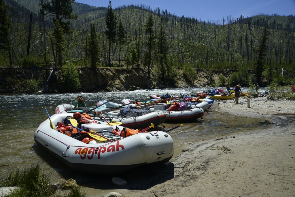rates and dates salmon river whitewater rafting trip