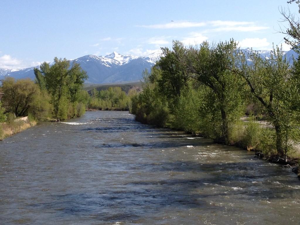 Spring Salmon River