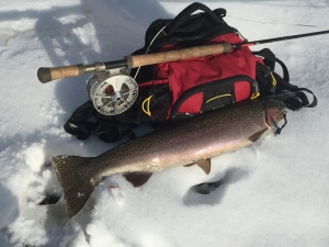 winter steelhead fishing